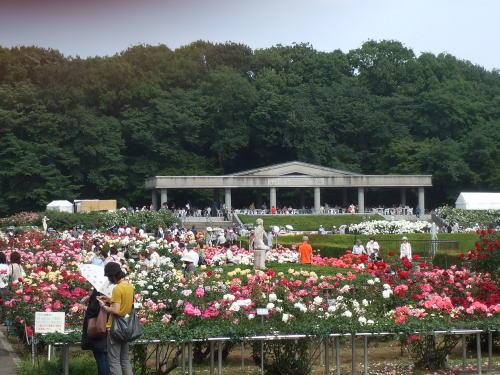 aaa植物園ai1.jpg